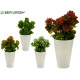 vaso di fiori conica blanca assortito colori veget