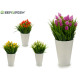 flowerpot white flower spike, colors 4 times assor