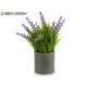 plastic lavender planter cement gray