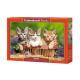 Puzzel 500 stuks: Drie Mooie Kittens