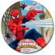 Spider-Man Warriors plate 8 pieces