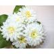 Bouquet full 40x25x10cm, with 7 gram heads