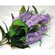 Lila strucc XL LUXUS 7 nagy virágok