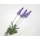Lavender Bouquet with 3 flowers 60x13cm, colors as