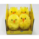 Chick set of 4 in window box 8x7x6cm