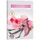 Tealight illat 6er vanília orchidea a hajtogatásba