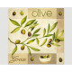 Premium napkins 20 pieces 33x33cm, olives