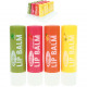 Lip care stick Fruit ELINA 4,2g 4-way sorting