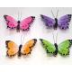 Schmetterling 2er Set! je 7x3cm Farben sortiert