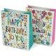 Geschenktasche Happy Birthday 23x18cm 2-fach sorti