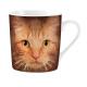 Narancssárga macska szeme bögre