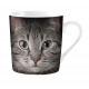 Mug Gray Cat's Eyes