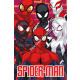 Spiderman Beach towel Eyes