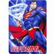 Superman Manta Polar