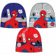 Spiderman Cappello